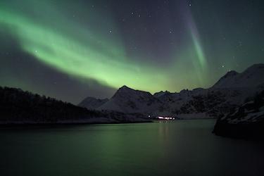Découverte de la navigation de nuit et de la faune aquatique polaire