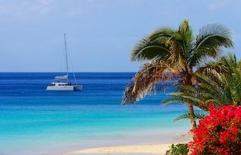 Croisière catamaran en Martinique